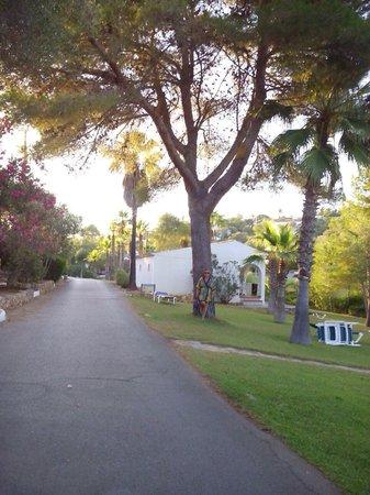 Club Hotel Tropicana Mallorca : Calle