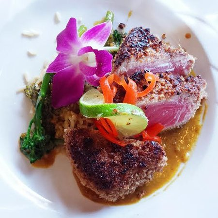 Harrison's Restaurant & Bar: Pecan Encrusted Ahi Tuna