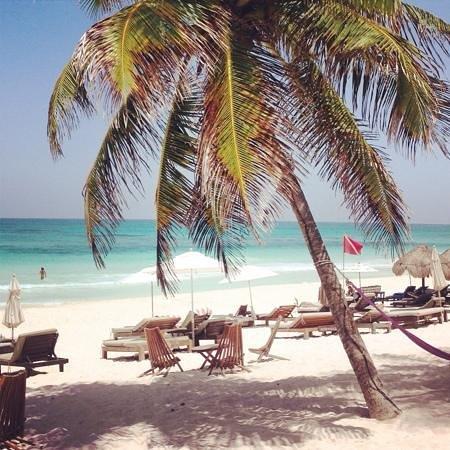 Casa Violeta: playa