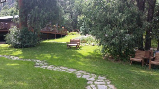 Country Sunshine Bed and Breakfast : Beautiful grounds