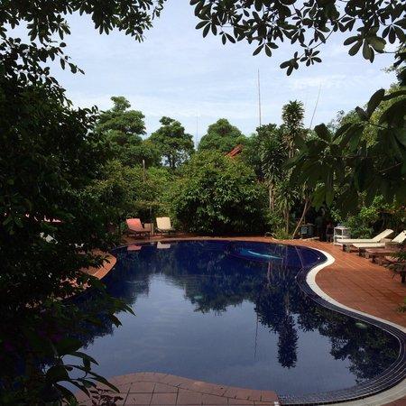 Spring Valley Resort : Nice clean pool