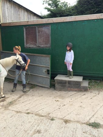 Woolacombe Riding Stables: Isobel waiting for her horse