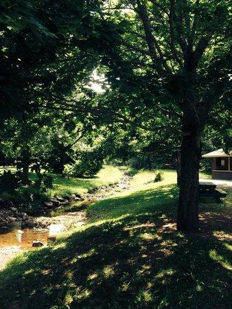 Victoria Park: Walking the trail