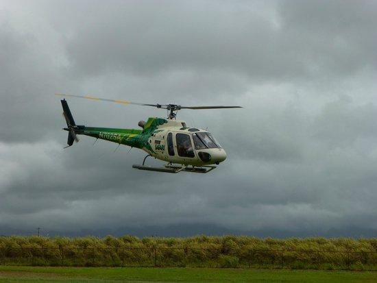 Safari Helicopters: Safari Helicopter Tours