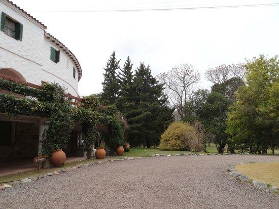 Hotel Ypora: Vista del parque.