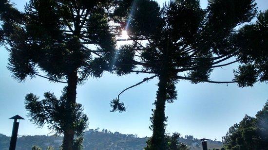 Recanto das Araucarias : Vista do quarto horizonte, muito calmo e lindo.