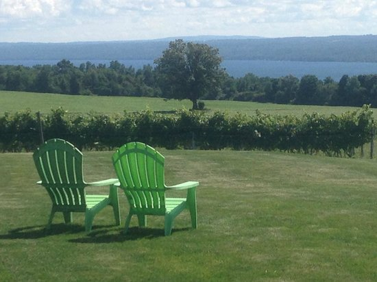 Aurora, NY: The best view of any winery on Cayuga Lake!