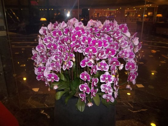 Orchard Hotel Singapore : Hotel outdoor entrance