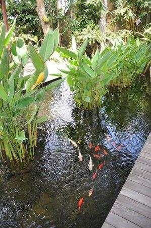 Komaneka at Tanggayuda: Spa Area