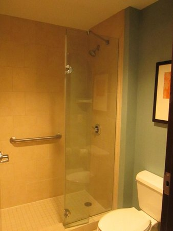 Hyatt Place Chesapeake/Greenbrier: Half Shower Door