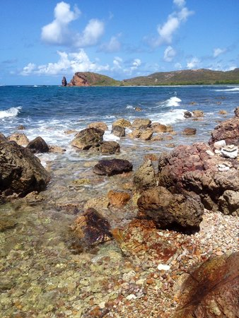 Virgin Islands Ecotours: The lovely beaches at the mangroves.