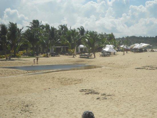 Nativos Beach: vista da praia