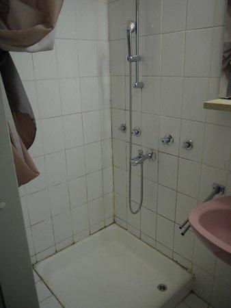 Bellevue Hotel: Ordinary bathroom