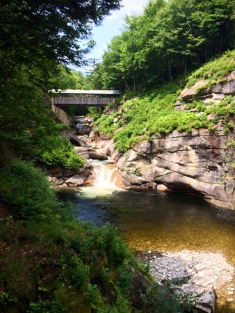 Flume Gorge: Pool and bridge