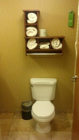 Hampton Inn Idaho Falls/Airport: Bathroom