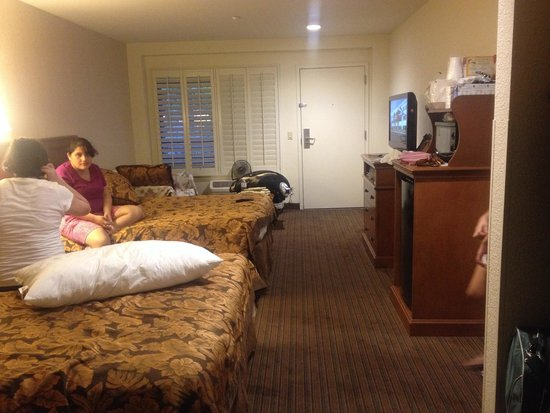 Anaheim Desert Inn and Suites: Perfect!!! Perfect!! Perfect!!!