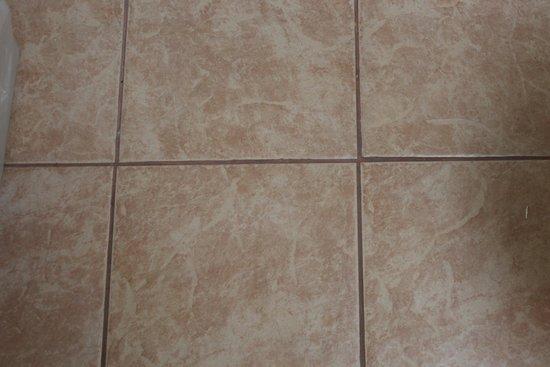 Econo Lodge Inn & Suites Walnut: Bathroom floor tile