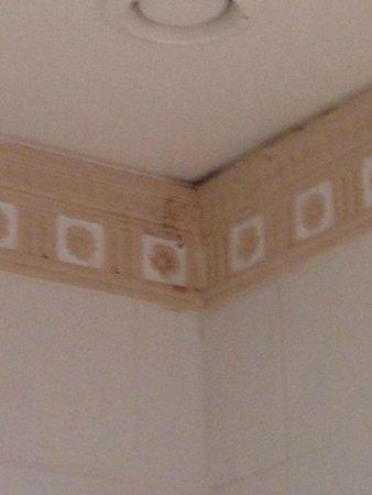 Hotel Elysees Union: The bathroom Mold
