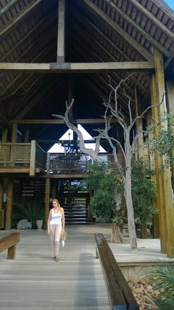 Kapama River Lodge: Lodge