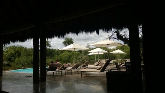 Kapama River Lodge: Pool