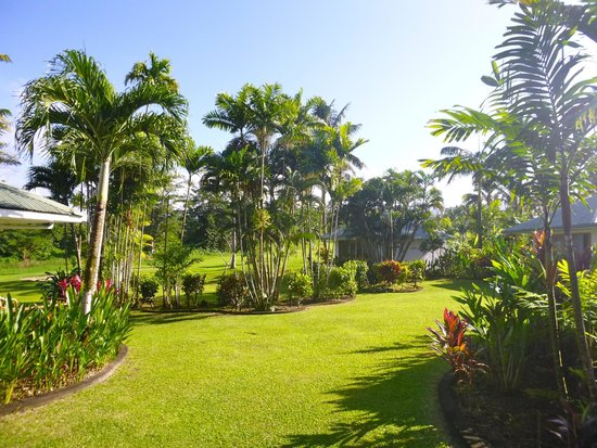 Sinalei Reef Resort & Spa: View from our garden room