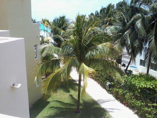 Viva Wyndham Maya: vista