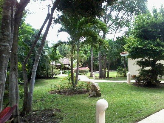 Viva Wyndham Maya: Areas verde