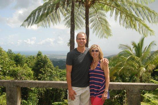 Rainforest Inn: Last Day at the Inn