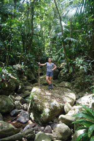 Rainforest Inn: Great hiking