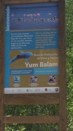 Tribu Hostel: reserva ecológica en amenaza