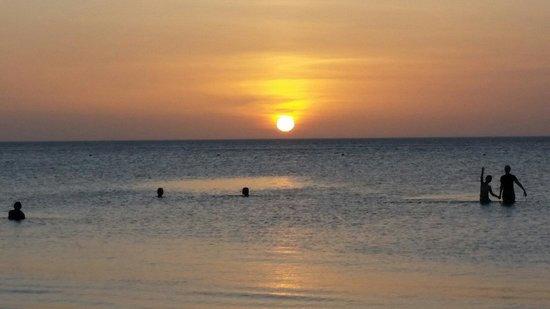 Tribu Hostel: Playa