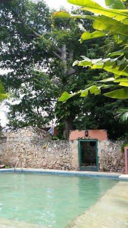 Nomadas Hostel: Pool