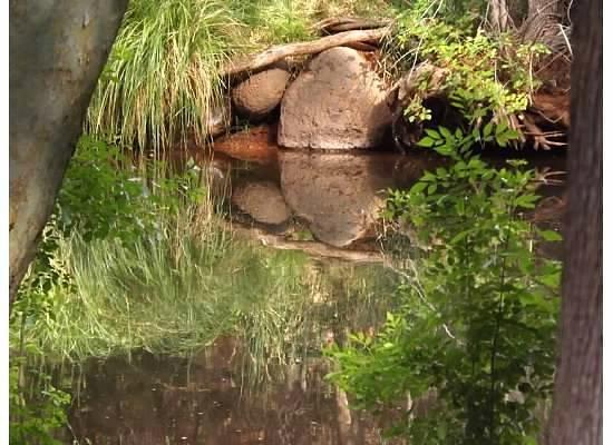 Los Abrigados Resort and Spa: Oak Creek viewed from the garden/park at Los Abrigados
