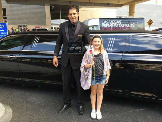 Presidential Limousine : Ari, the driver was great with our kids