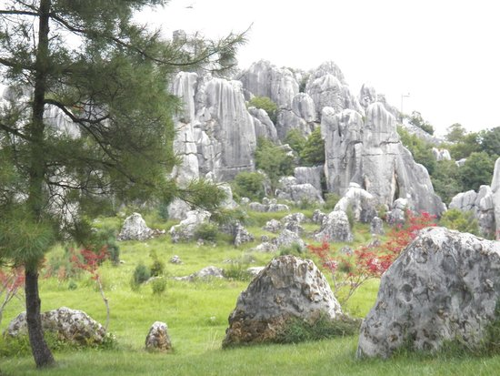 Yunnan Stone Forest Geological Park: stone forest