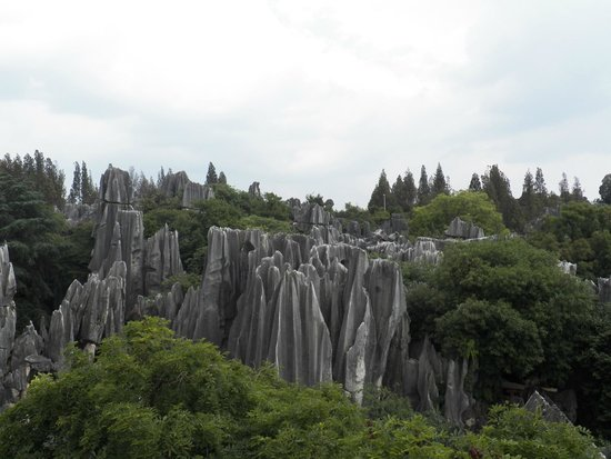 Yunnan Stone Forest Geological Park: stone forest. where's Goku?