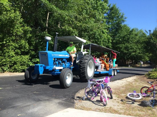 Yogi Bear's Jellystone Park at Daddy Joe's: Tractor ride with Yogi