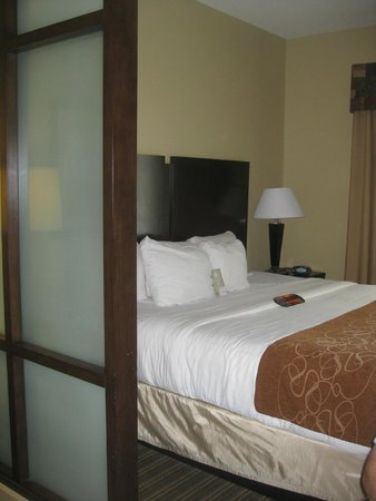Comfort Suites West of the Ashley: Room, King bed