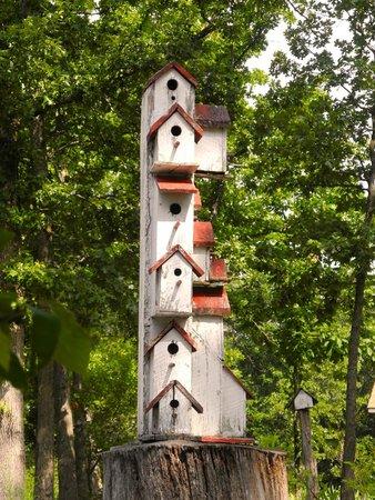 Stone Ridge Inn: B & B for Birdies too