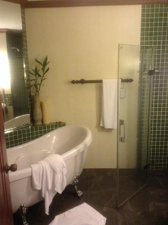 Borei Angkor Resort & Spa : bathroom