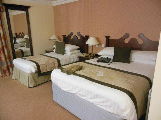 Treacys Oakwood Hotel: ground floor room