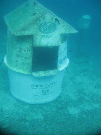 Hideaway Island Resort: underwater  post office