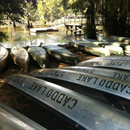 Moonglow Lodge: Canoes at the state park
