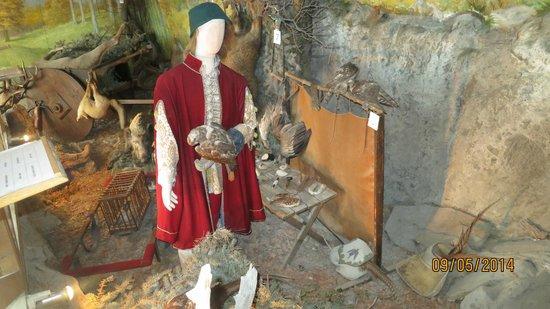 Visegrad Citadel: museum