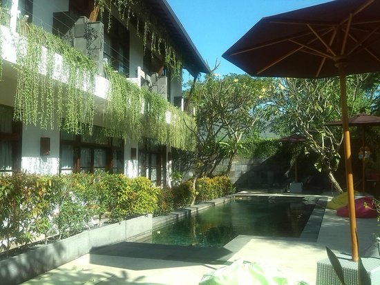 The Studio Bali : view from the dining area