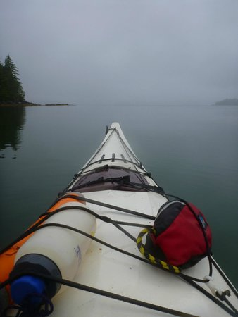 Adventuress Sea Kayaking: The peaceful calm of the day!