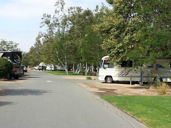 Santee Lakes Recreation Preserve: Road C.