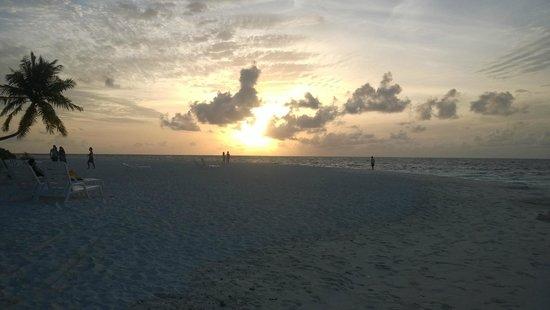 Fihalhohi Island Resort: beach vview