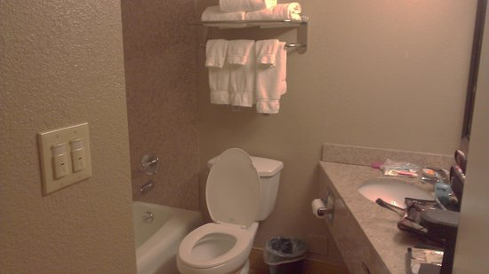 La Quinta Inn & Suites Indianapolis South: Our Bathroom