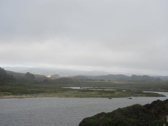 Pescadero Marsh Natural Preserve, Half Moon Bay, Ca